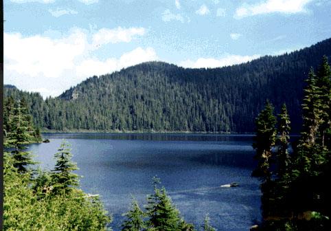 Mowich Lake Swimming